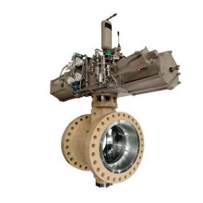 Neles™ butterfly valve, series BW
